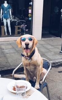 Charleston Max!